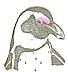 Spheniscus demersus