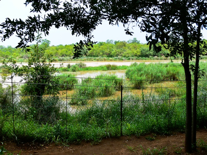 View from Sirheni bird hide