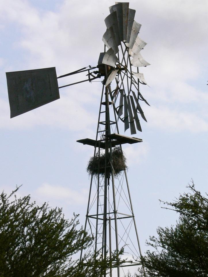 Windmill Kruger National Park
